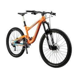 Mountain Bikes on Sale