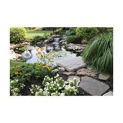 36% off Garden Pond Kit with Solar Light