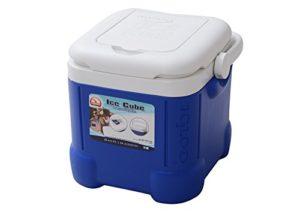 Igloo-Ice-Cube-Cooler-14-Can-Capacity-Ocean-Blue-0
