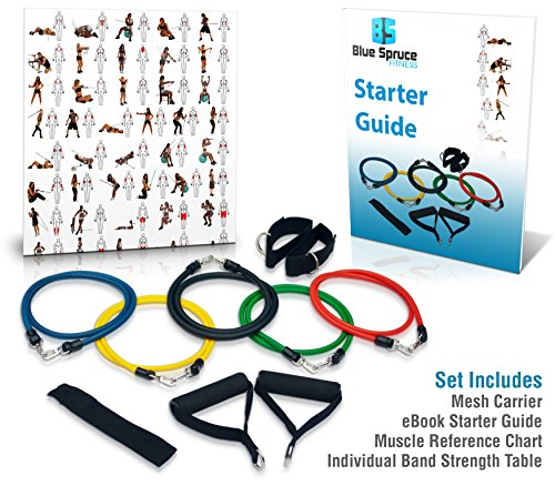 Resistance Band Set- Exercise Bands- Crossfit