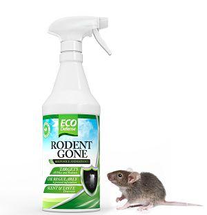 Top Deals on Pest Control