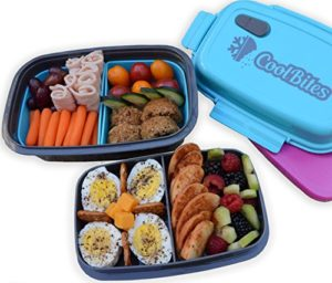 Microwavable Lunch Box 40 Off