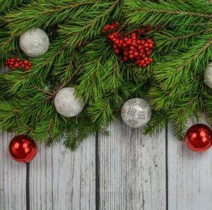 Bestselling Christmas Trees
