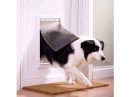 Top Deals on Pet Doors